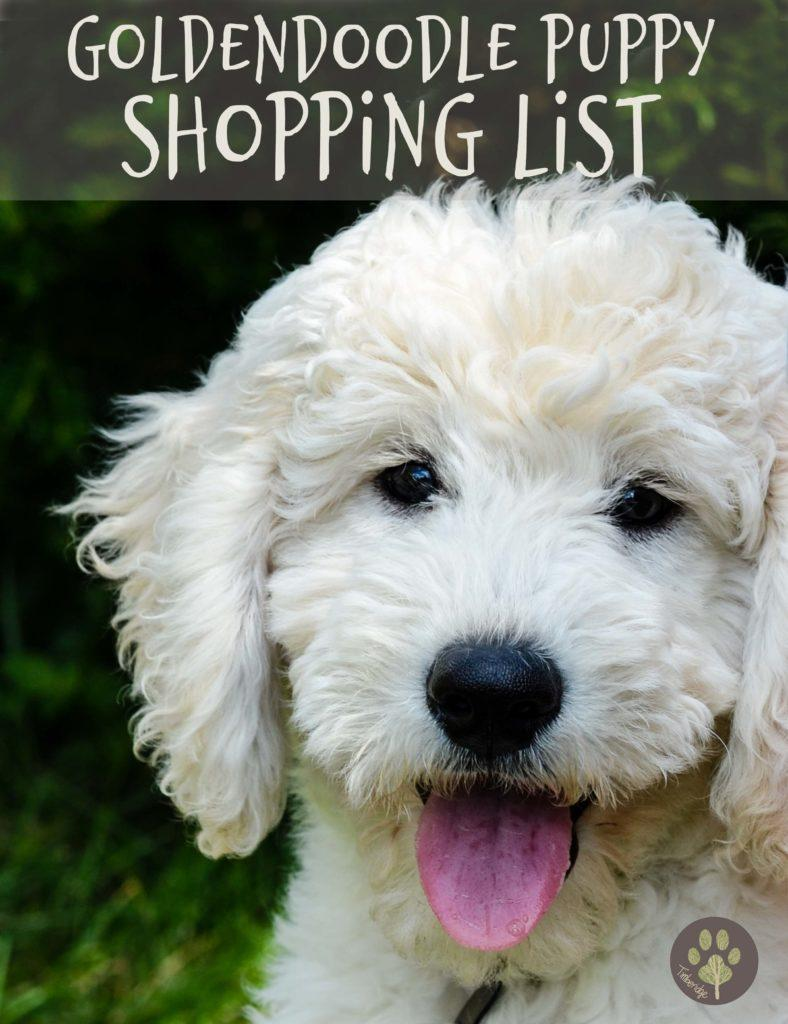 Goldendoodle Puppy Shopping List - Timberidge Goldendoodles
